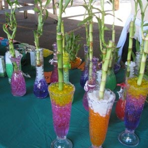 Create Your Own, Bamboo Vase, College Entertainment Idea