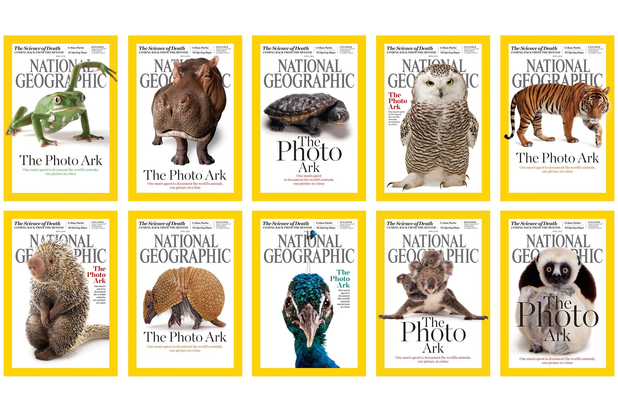 National Geographic, Photographer, Joel Sartore